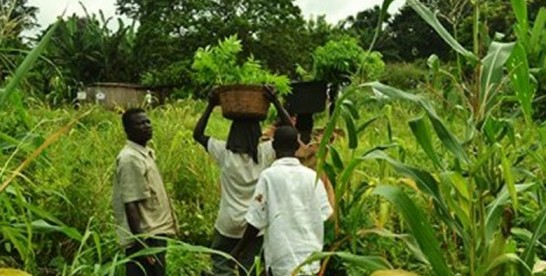 Investments and application of technology said to be crucial for agriculture