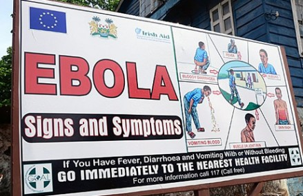Over 800 health workers infected with Ebola – WHO