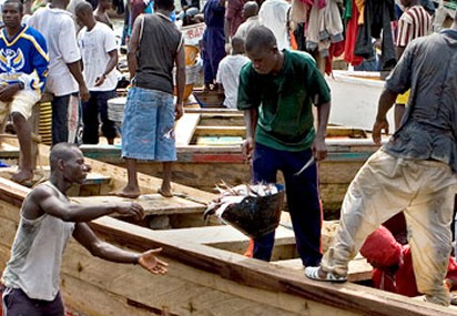 Insurance for fishermen to be launched in December