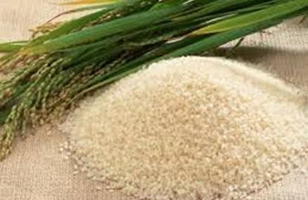 Jantong-Daboashie gets Rice Processing Centre