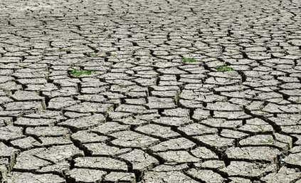 Minister calls for enforcement of drought management policies