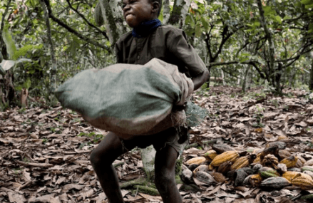 Child labour is threat to West Africa – MP