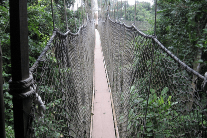 Kakum Canopy Walkway intact, safe and secure – Management