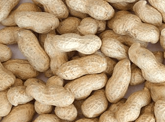Groundnuts said to have huge export potential for Ghana