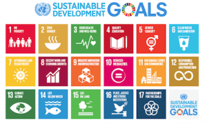 Ghana said to be making moderate progress in nine SDGs
