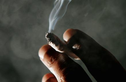 Marijuana may produce psychotic-like efforts in high-risk individuals – Researchers