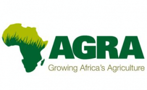 Investment in agriculture sector key for economic recovery – AGRA