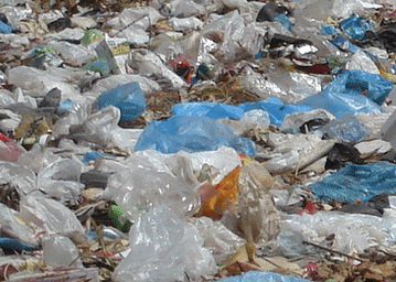 Plastic waste dents the beauty of Nzulezu