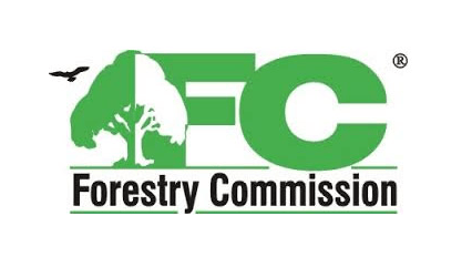 NGO urges Forestry Commission to stop granting exploitation licenses, permits