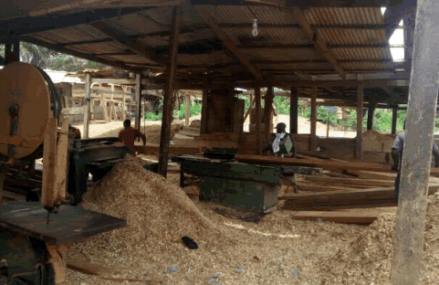 The dangers associated with occupational exposure to wood dust