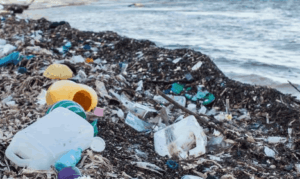 Plastic waste is a threat to marine life and public health – EPA