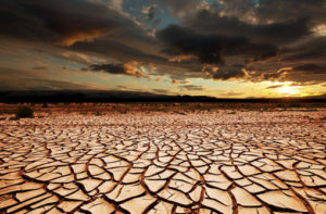 Climate change in Africa could cost continent's peace – Index