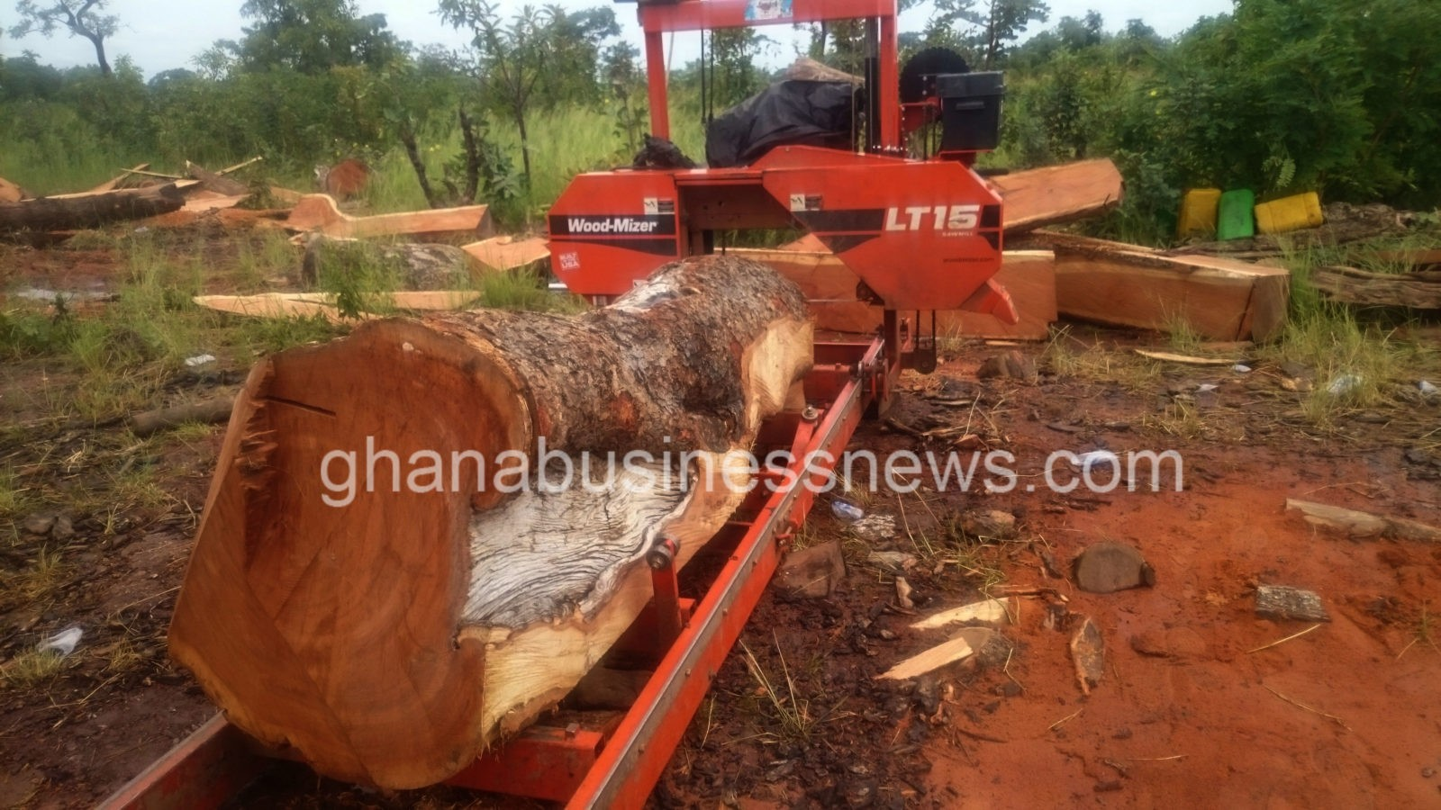 China S Lust For Rosewood Fuels Logging In Ghana S Poorest Region