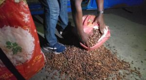Customs intercepts smuggled cocoa beans