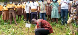 Young people encouraged to go into herbal plant farming